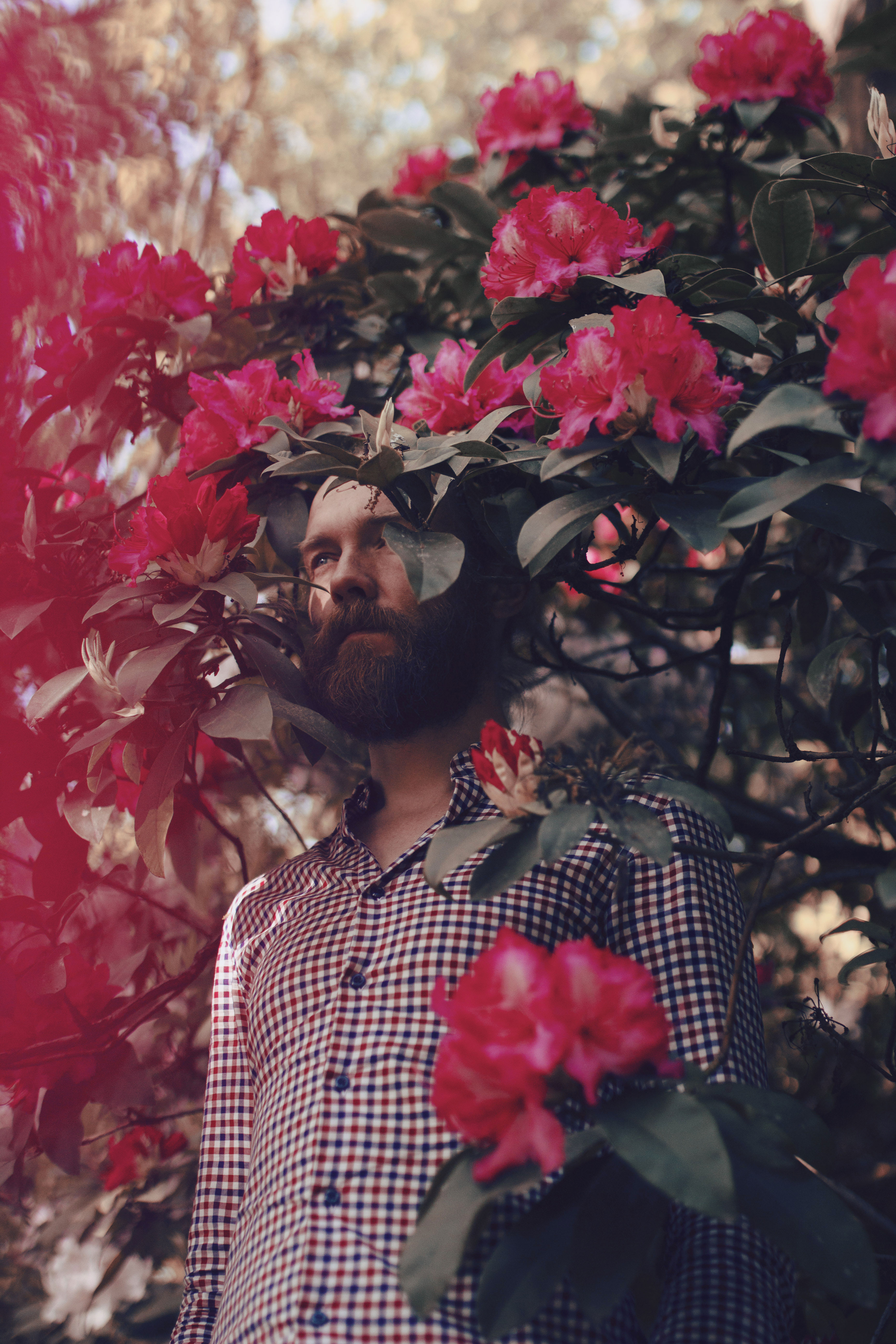 portrait masculin dans les fleurs
